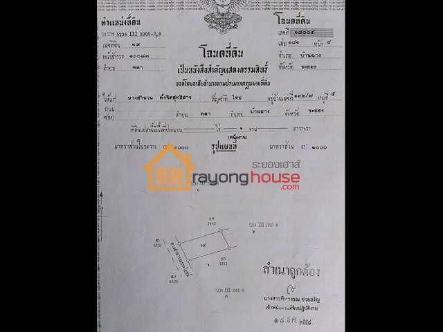 ขายถูก บ้านเดี่ยวชั้นเดียวพลา ถนนสนามบิล-พลา ต.พลา อ.บ้านฉาง เนื้อที่ 100 ตรว.