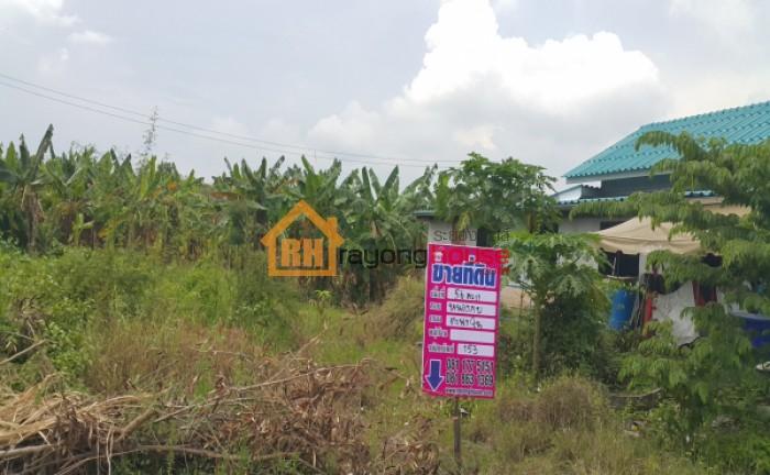 ขายถูก ที่ดินเปล่า ข้างตะพงซิตี้  ตมตะพง อ.เมือง ระยอง  ขนาด 56 ตรว. บ้านระยอง ที่ดินระยอง