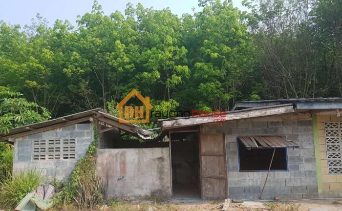 ขายถูก บ้านปูนชั้นเดียว แถวหนองบัว เลขที่ 8